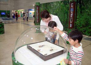 九州創価学会 熊本県益城町で「わたしと地球の環境展」を開催